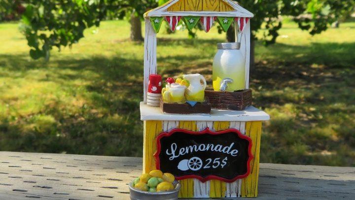 Do You Have a Lemonade Stand?