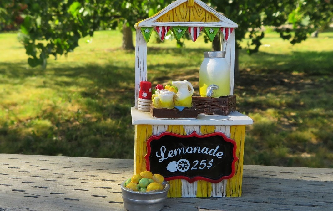 Do You Have a Lemonade Stand?