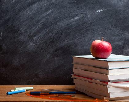 The Best Moderators? A 3rd Grade Teacher!